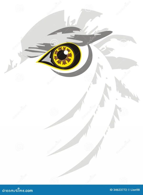 Eagle Eye Clip Art