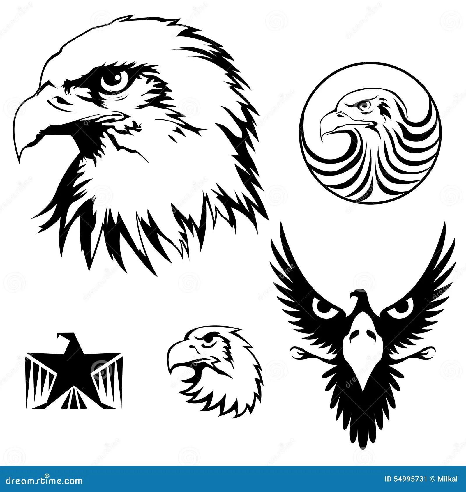 Realistic Eagle Head Vector Illustration