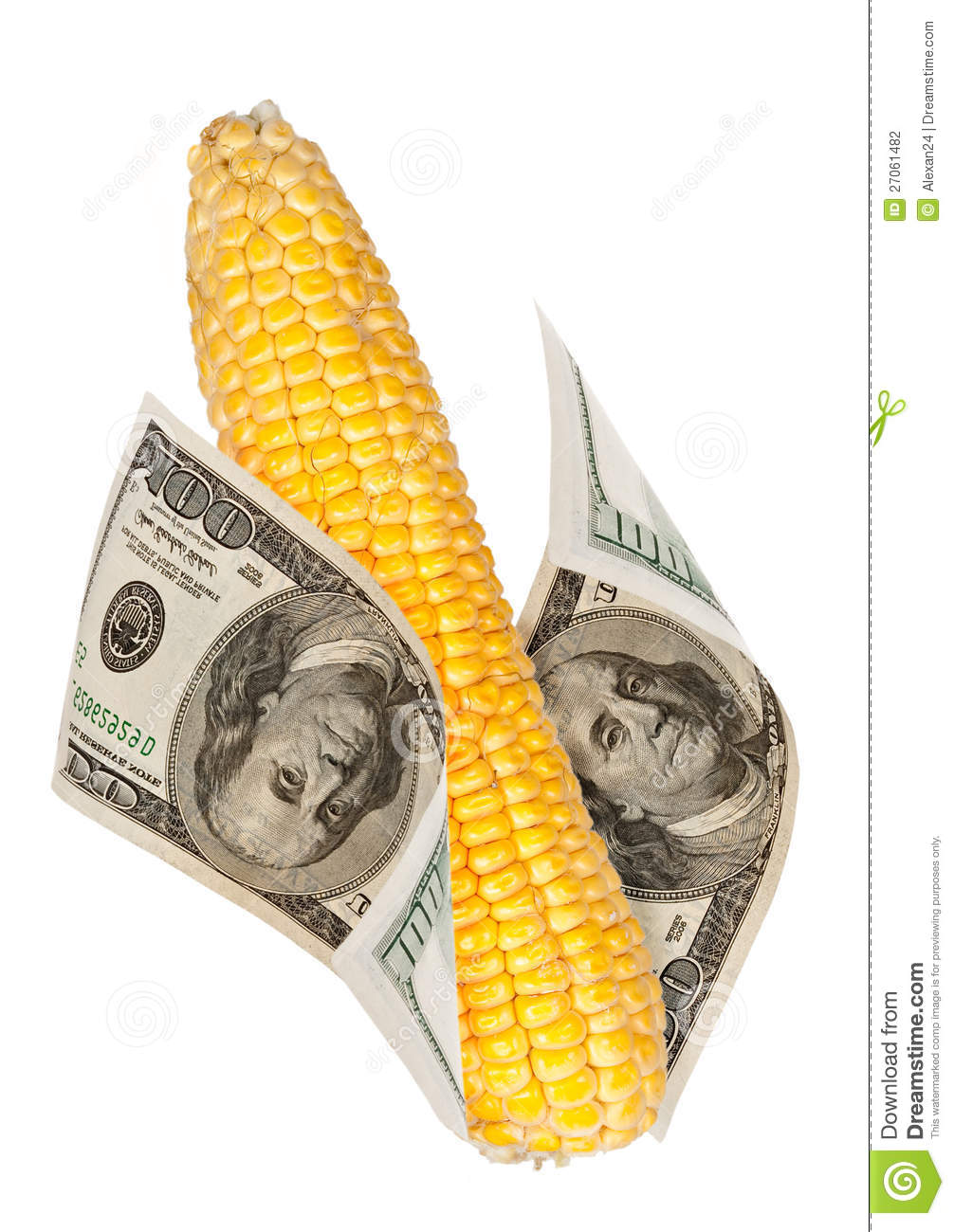 hight resolution of an ear of corn with the money