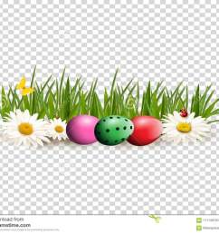 easter clip art for greeting card with dyed eggs lying on gras [ 1300 x 1079 Pixel ]