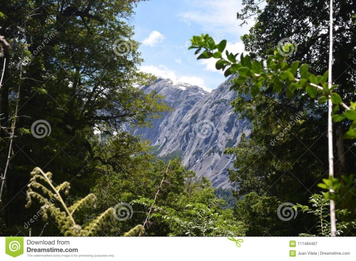 Ecoregion of the Valdivian temperate rainforests in southern Chile Chilean  Patagonia