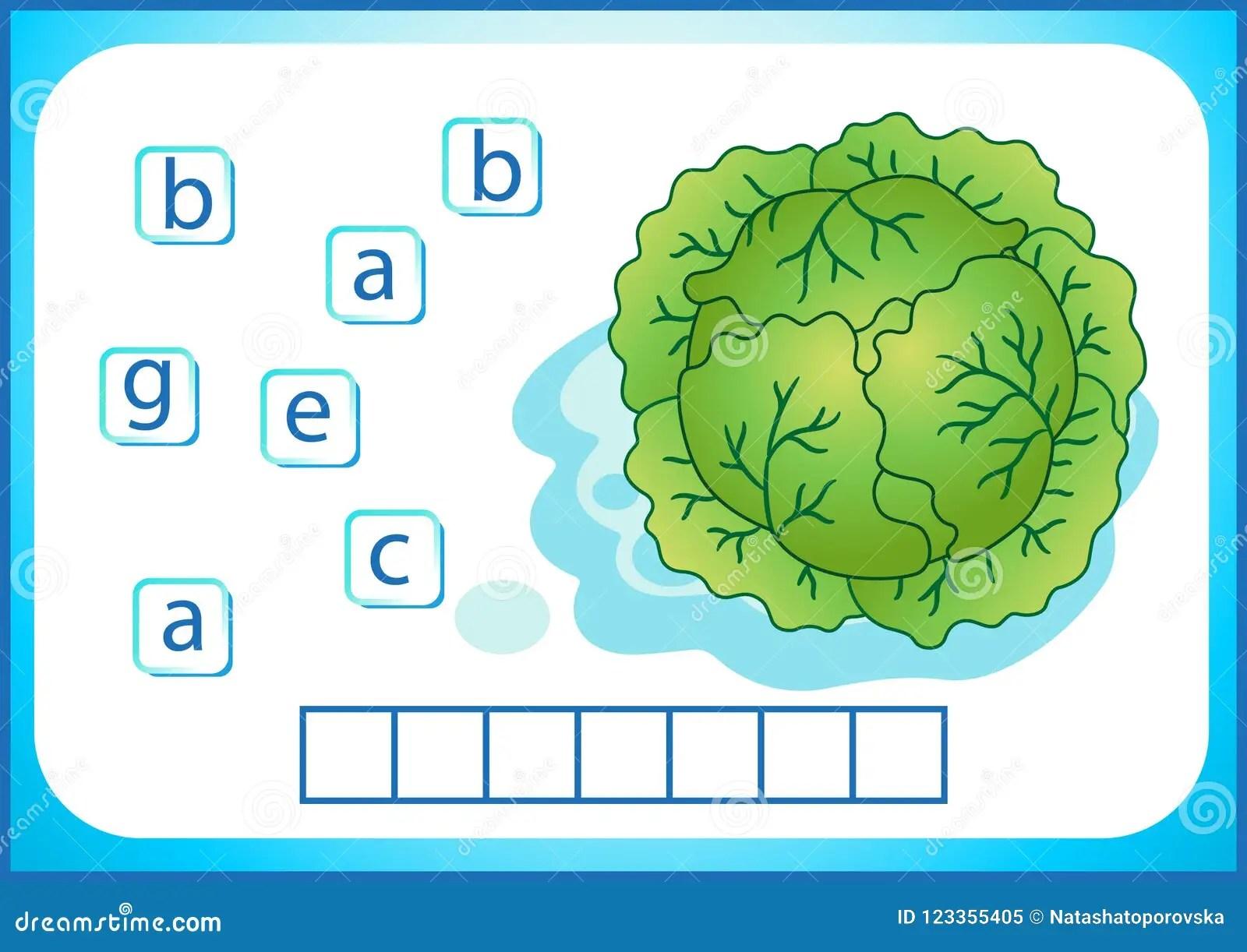 Educacion Escolar Flashcard Ingles Para Aprender Ingles