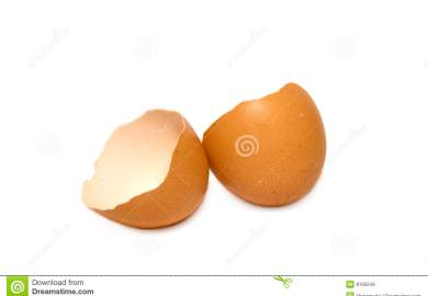 Chicken Egg Stock Photos Pictures Royalty Free Chicken