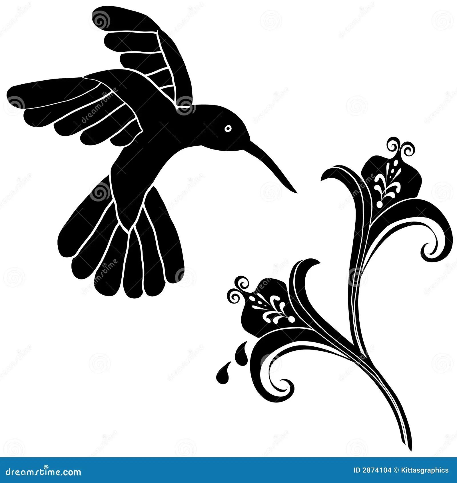 El Colibri Florece La Decoracion Ilustracion Del Vector