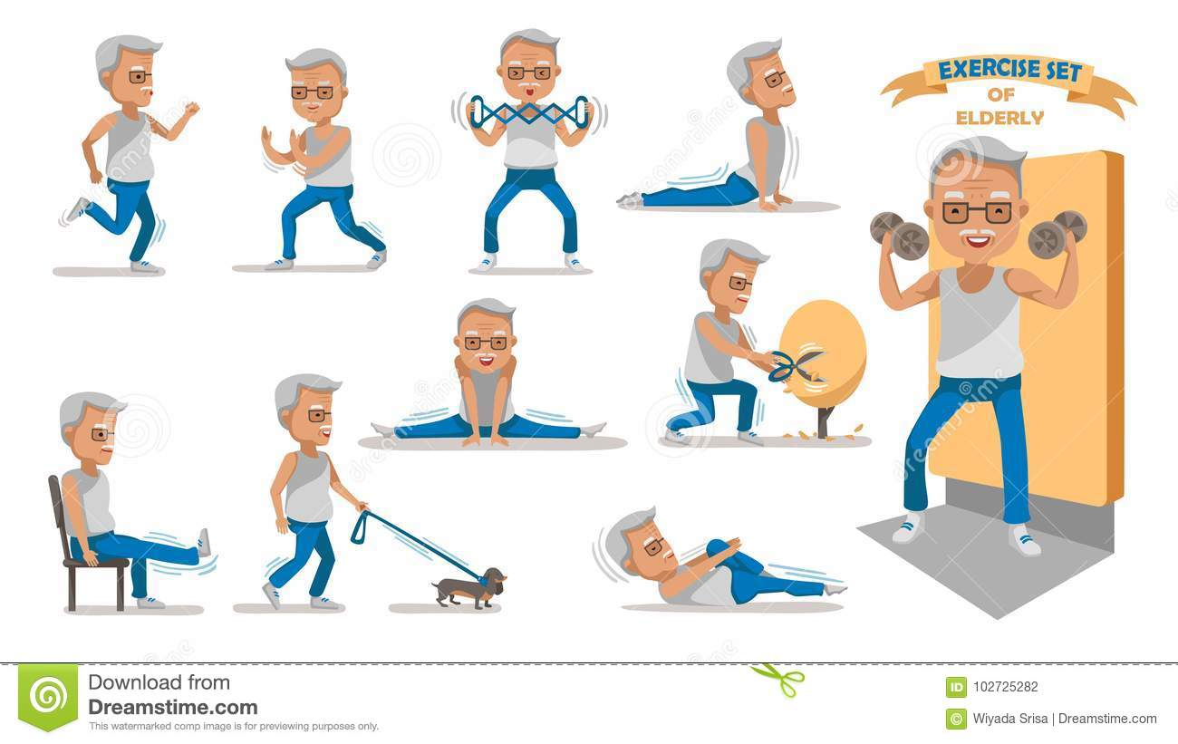 chair exercises for seniors handout dining styles names elderly exercise stock vector illustration of equipment