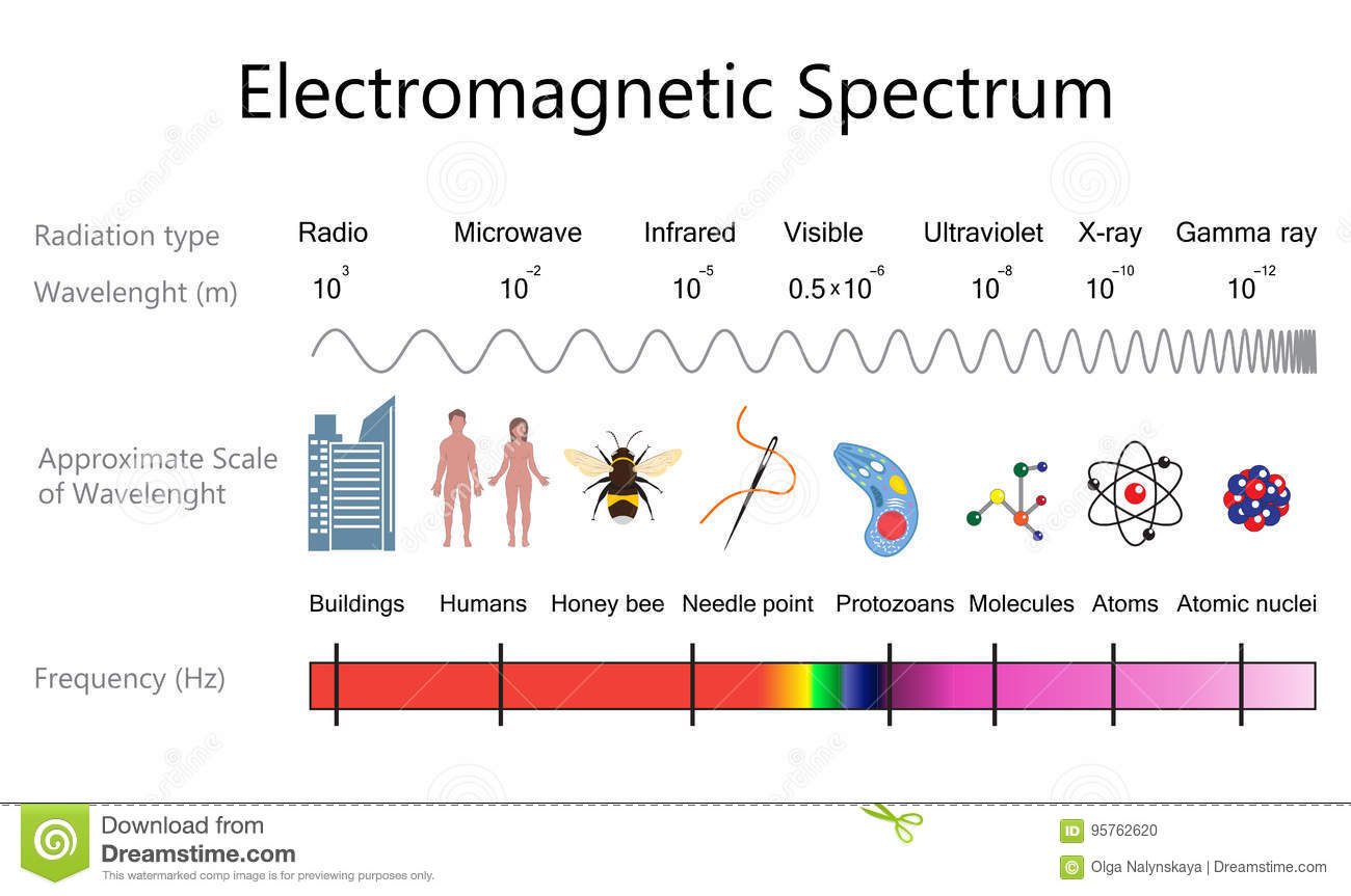 electromagnetic spectrum diagram labeled 1979 trans am starter wiring electromagnet cartoons illustrations and vector stock