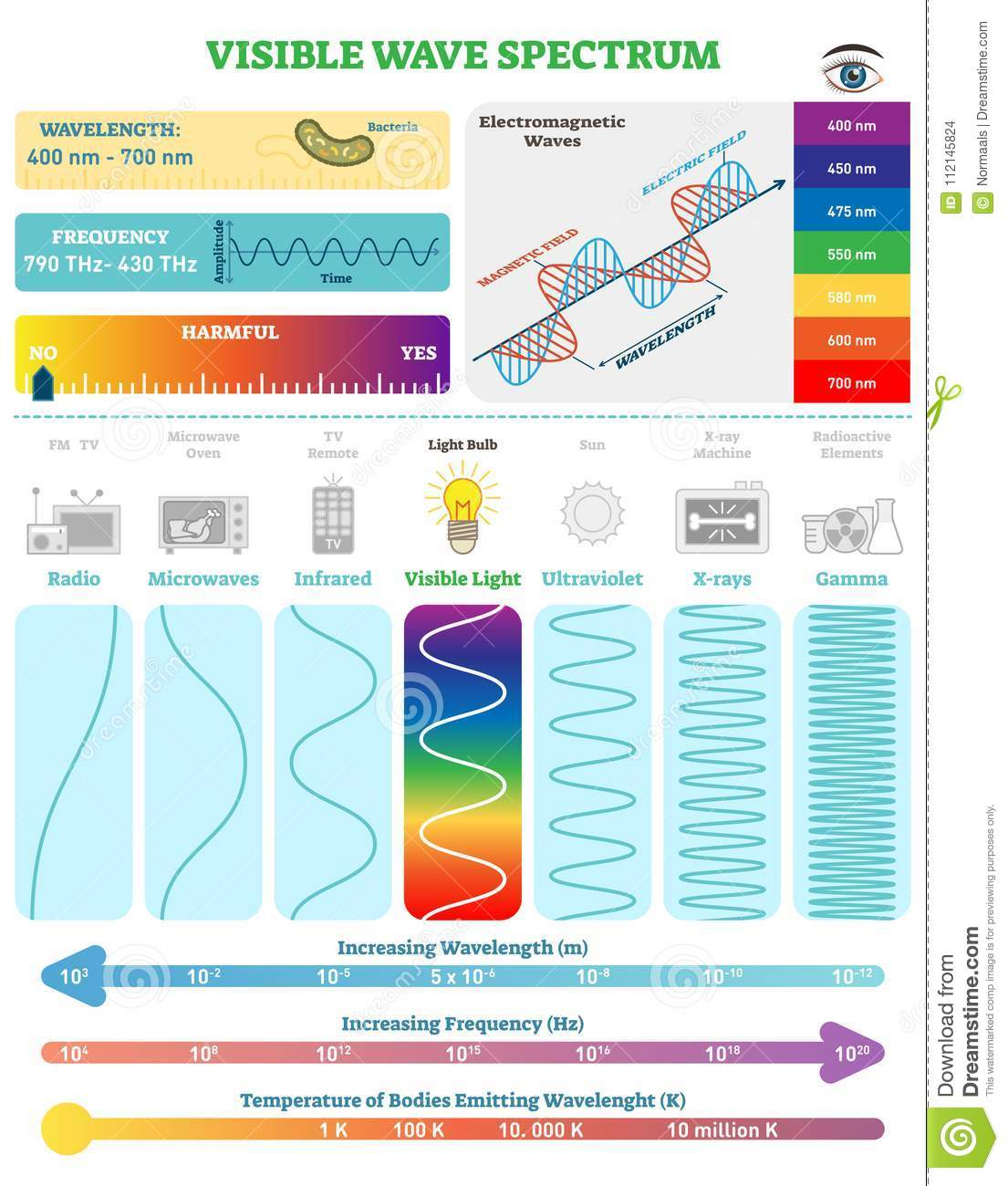 Electromagnetic Waves Visible Wave Spectrum Vector