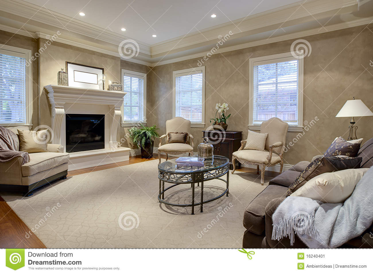Elegant Living Room Lounge Stock Image Image 16240401