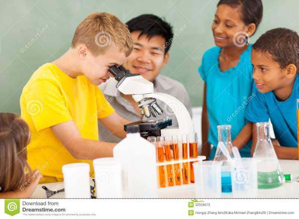 Elementary Science Class Stock Of Education