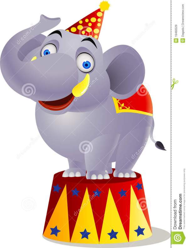Elephant Circus Stock Vector. Illustration Of Character