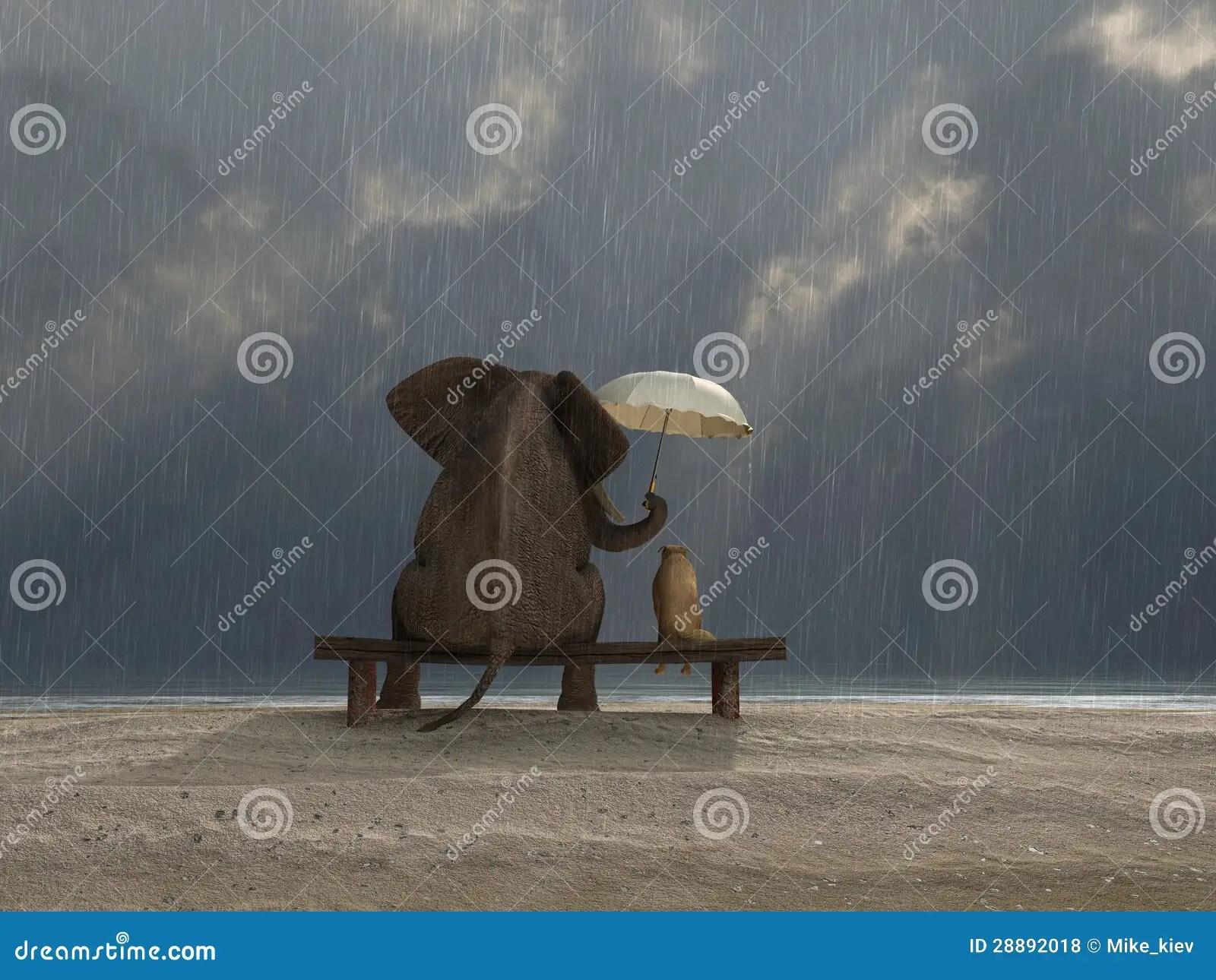 Elephant And Dog Sit Under The Rain Royalty Free Stock