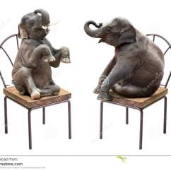 Baby Sitting Chair India Turquoise Office Uk Elephant Stock Photos Royalty Free Images