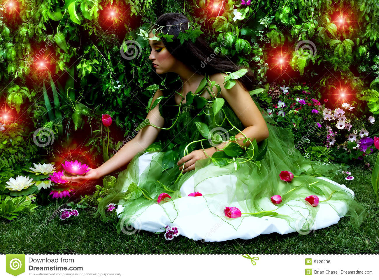 Enchanted Garden Royalty Free Stock Image  Image 9720206
