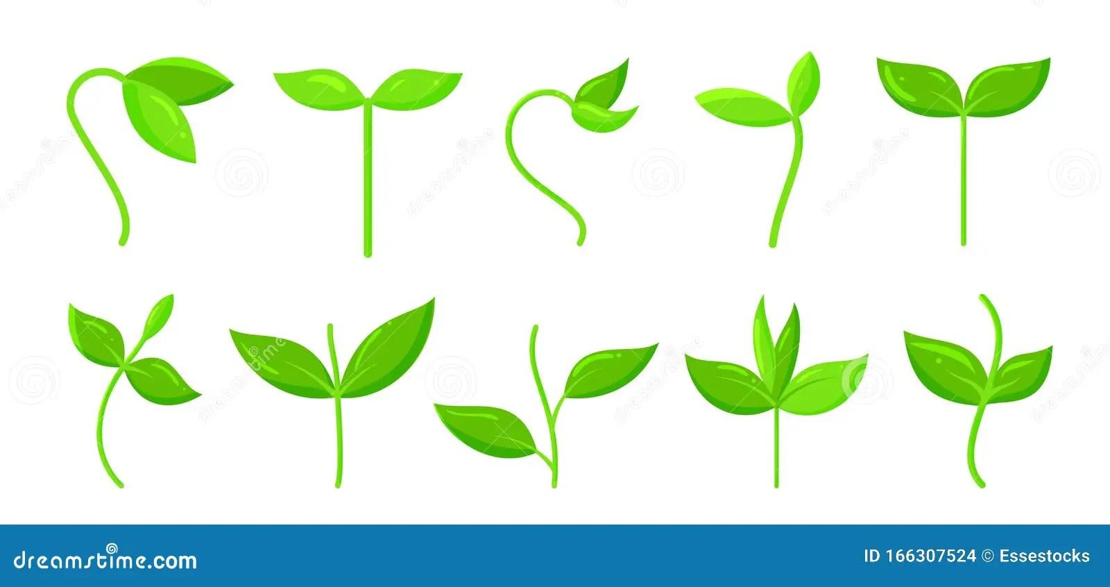 parodie d usine pousse d herbe verte