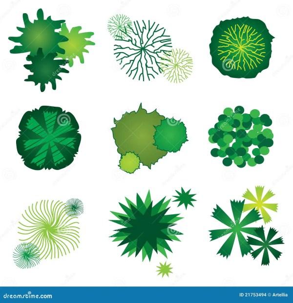 ensemble de graphismes 'arbre