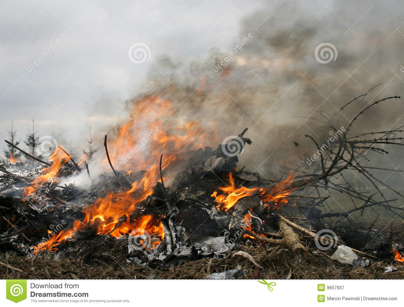 Essay The Causes Of Air Pollution