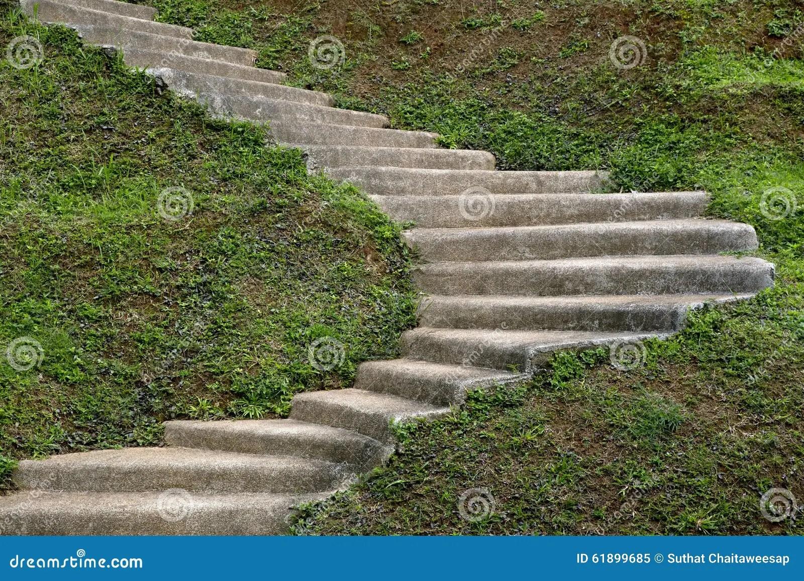 Escalier Naturel Dans Le Jardin | Un Bassin Naturel Dans Un Jardin ...