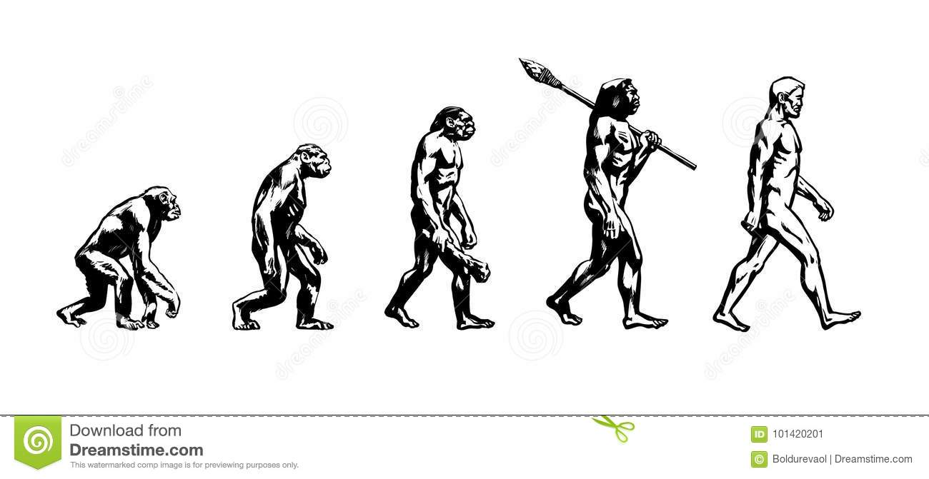 Hominid Cartoons, Illustrations & Vector Stock Images