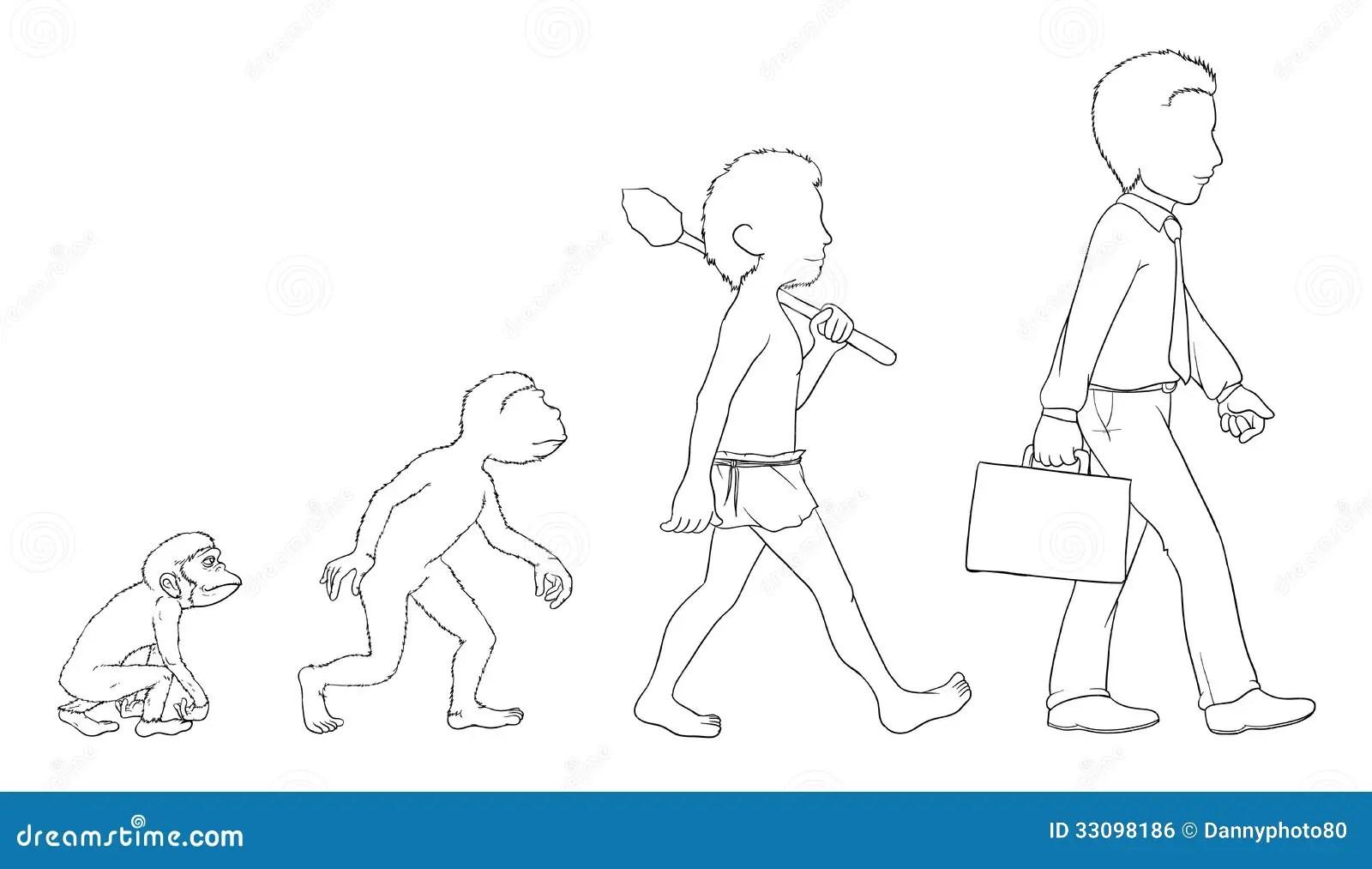 Evolution outline stock vector. Illustration of growth