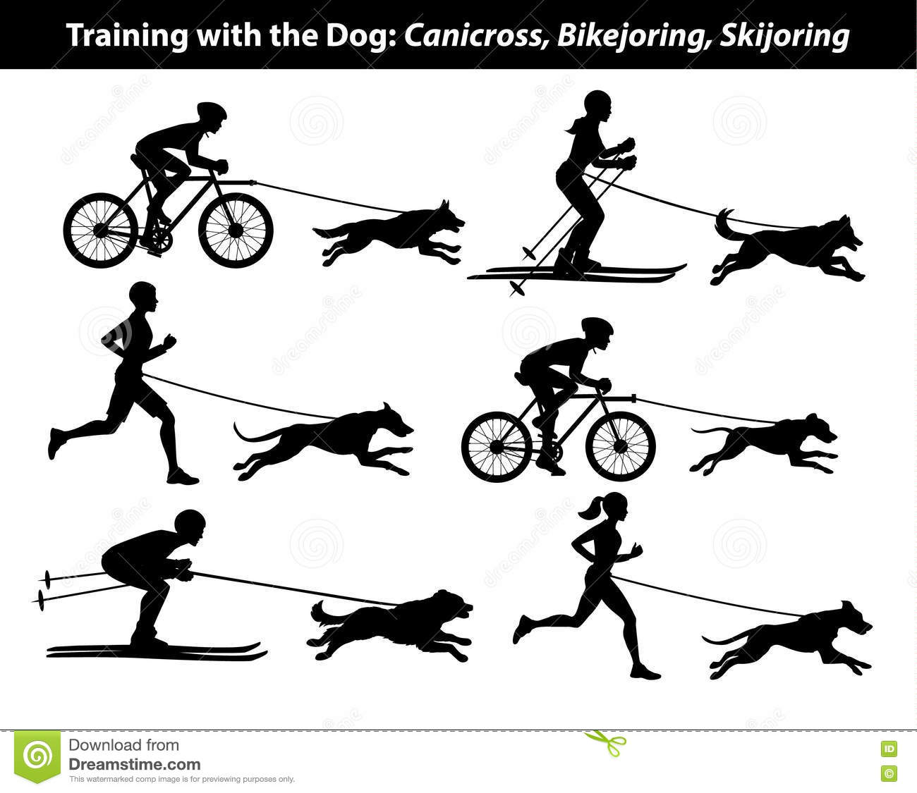 Exercice S Exercant Avec Le Chien Canicross Bikejoring