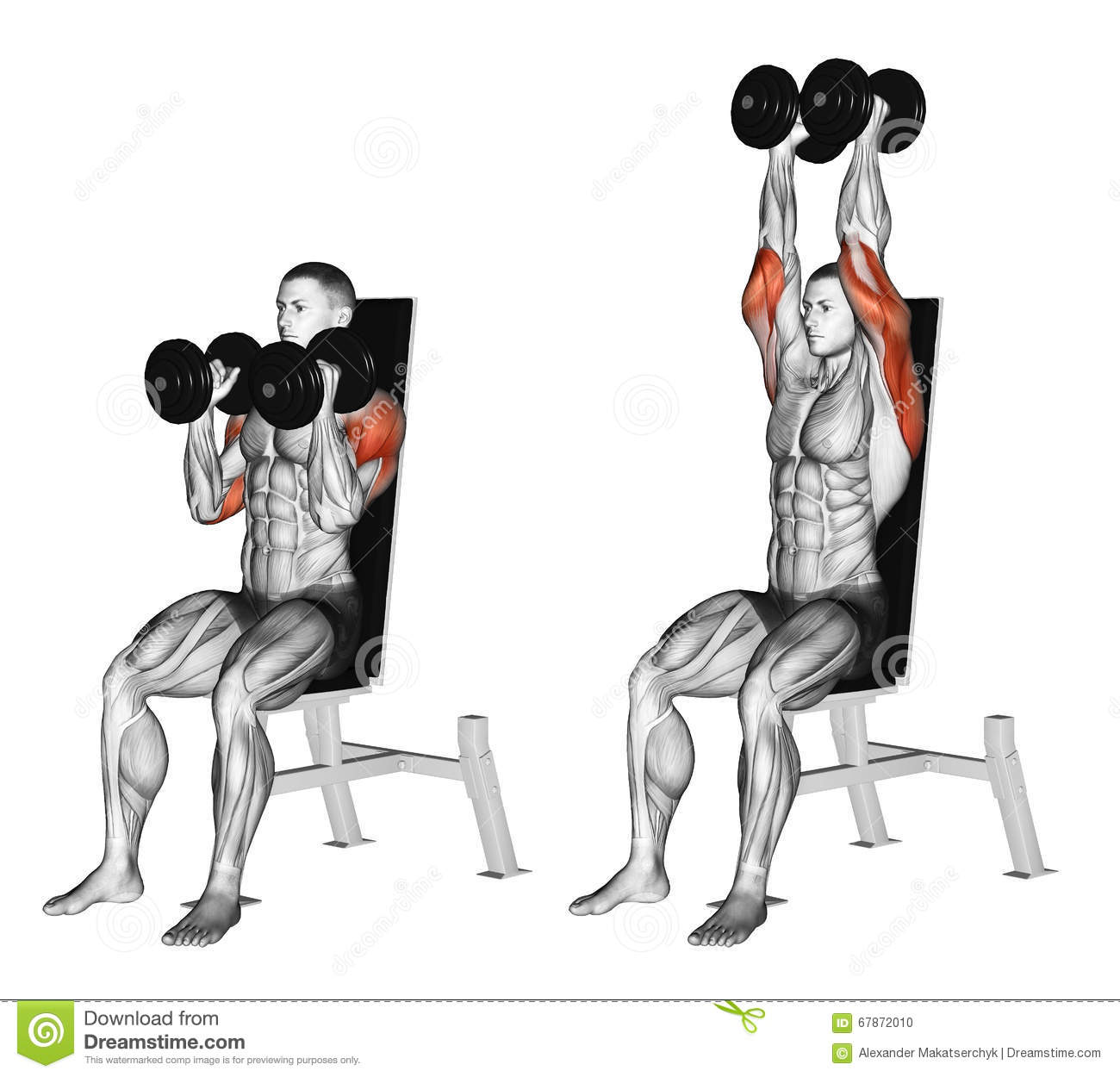How Much Weight Is A Bar On Bench Press. Spotting In