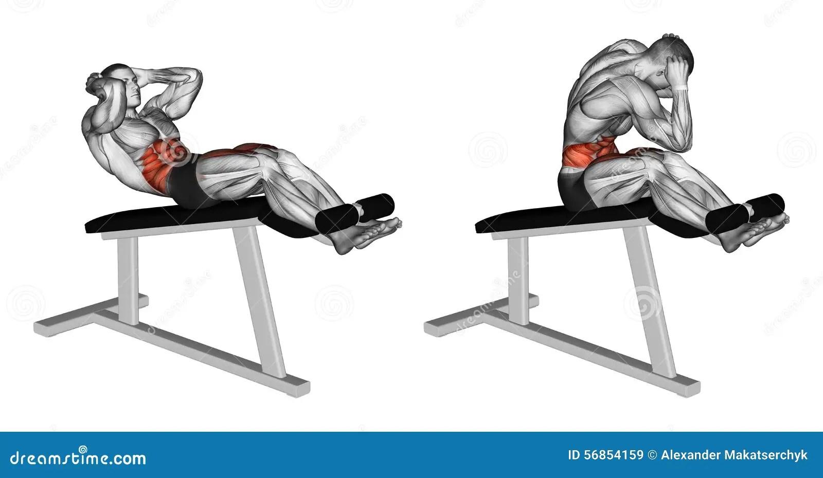 Exercising El Torcer Para Girar La Silla Romana Stock De