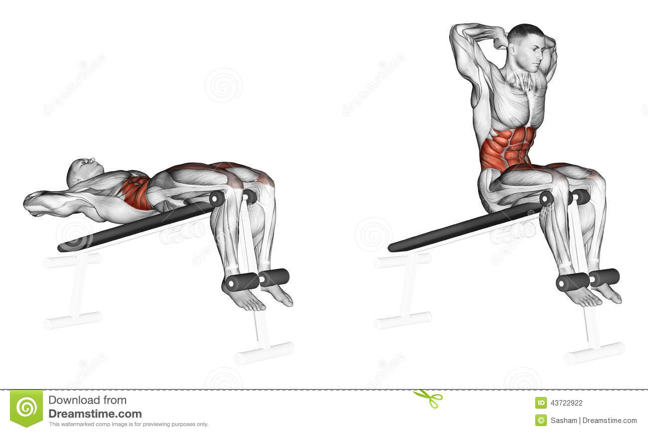 Exercising Lifts Torso On An Incline Bench Stock