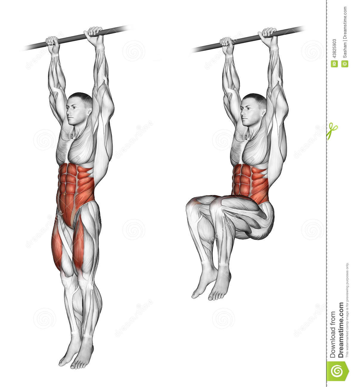 Exercising Ups Knees Stock Illustration