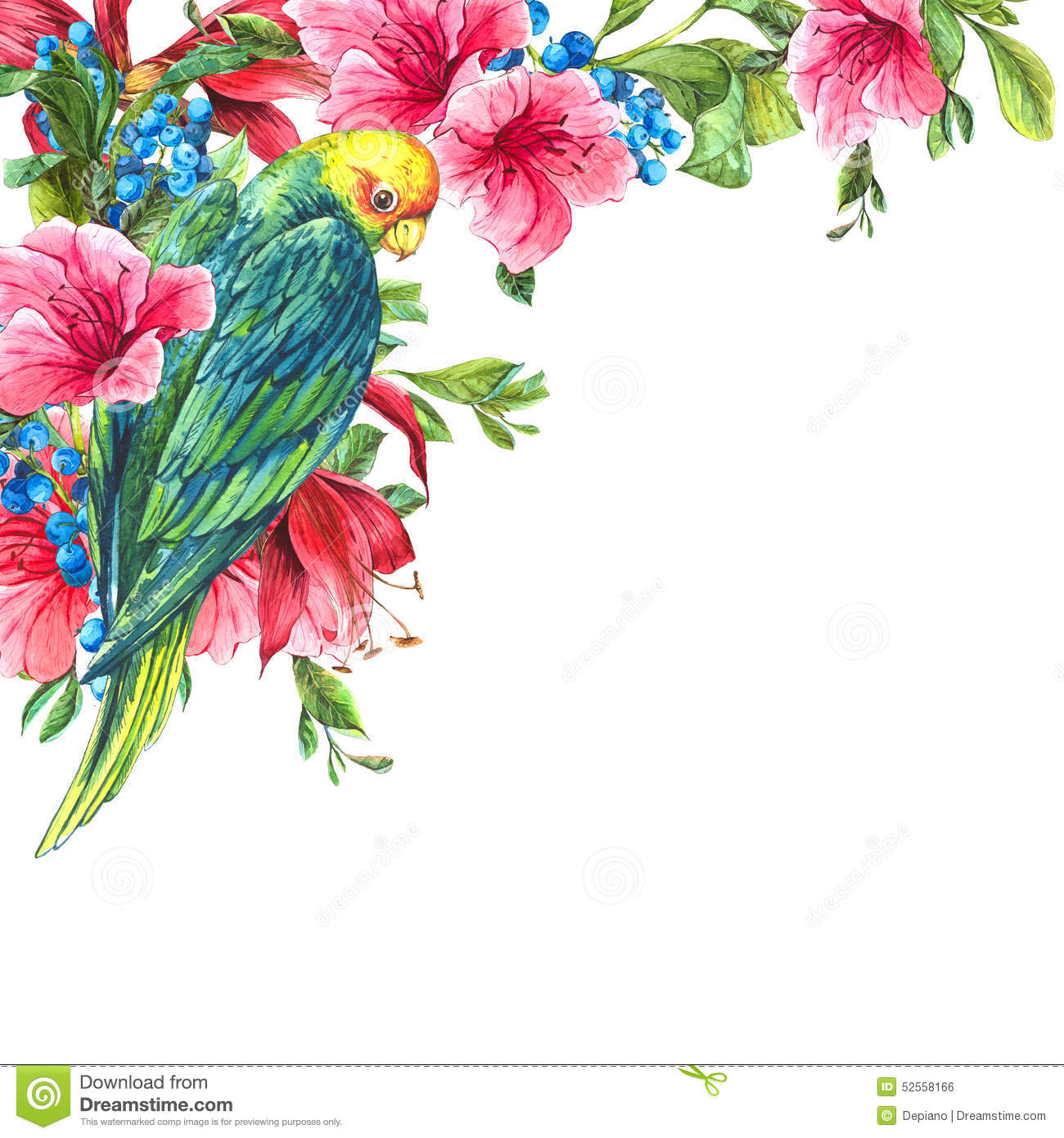 Animal Print Wallpaper Border Exotic Vintage Card With Tropical Flowers Parrots Stock