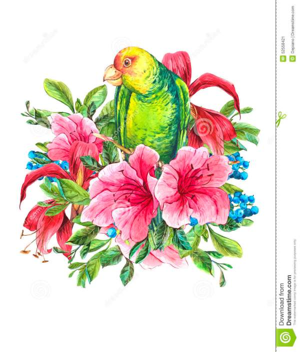 Exotic Vintage Card With Tropical Flowers Parrots Stock