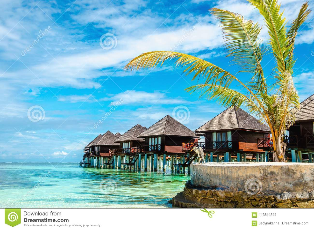 exotic wooden huts on