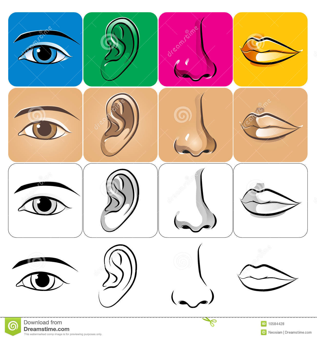 Eye Ear Nose Lip Stock Vector Illustration Of Colorful