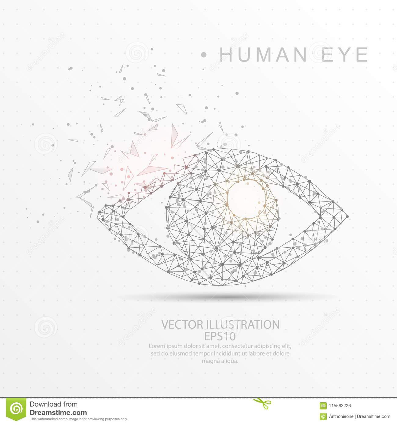 hight resolution of eye shape digitally drawn low poly wire frame