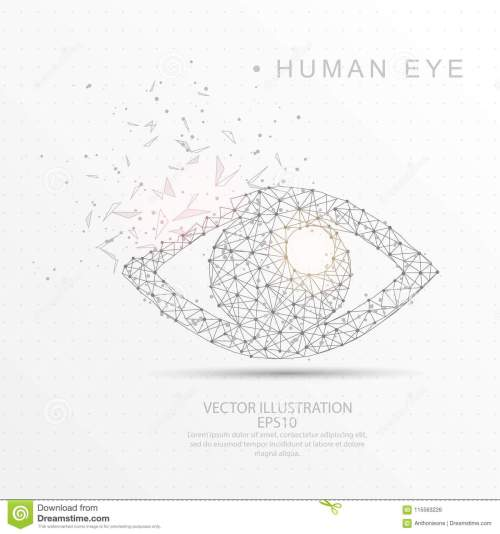 small resolution of eye shape digitally drawn low poly wire frame