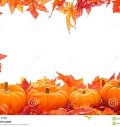 fall leaf border with pumpkins isolated on a white background [ 1300 x 957 Pixel ]