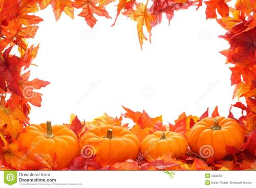 small resolution of fall leaf border with pumpkins isolated on a white background