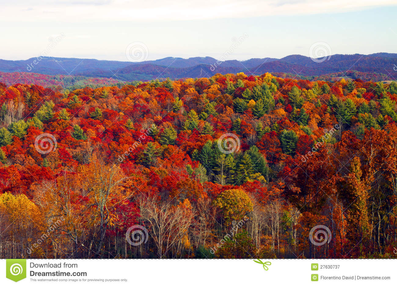 Fall Smoky Mountains Wallpaper Fall Colors Royalty Free Stock Photography Image 27630737