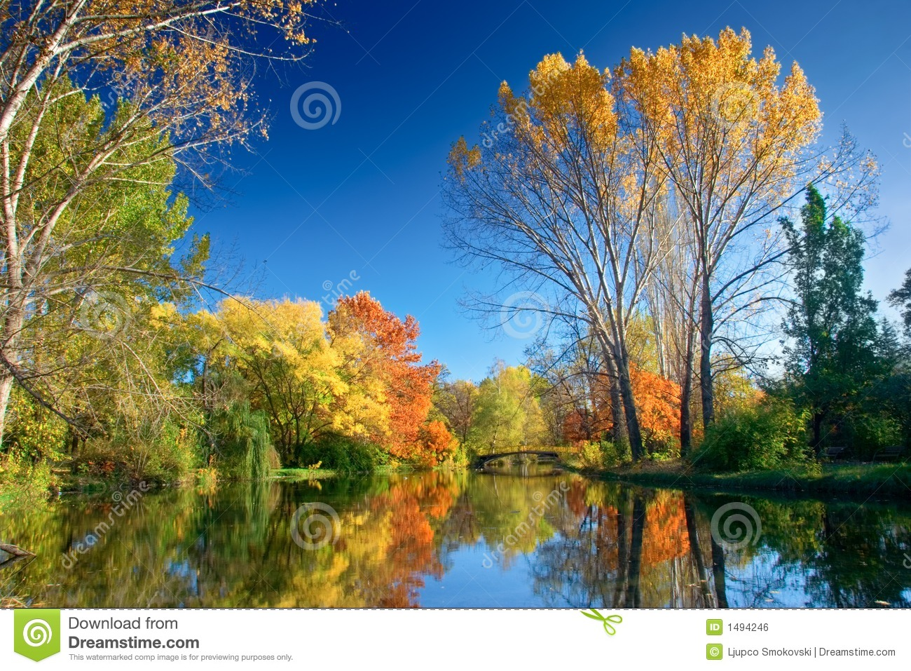 Free Wallpaper Fall Colours Fall Landscape Royalty Free Stock Image Image 1494246