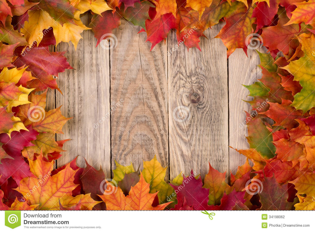 Cartoon Fall Wallpaper High Def Fall Leaves Frame Stock Photo Image Of Yellow Plank
