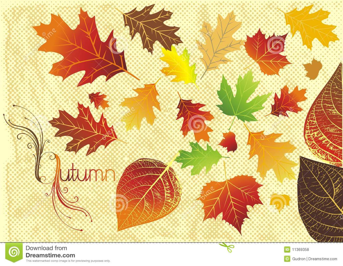 Free Fall Foliage Wallpaper Fall Leaves Illustration Stock Illustration Illustration
