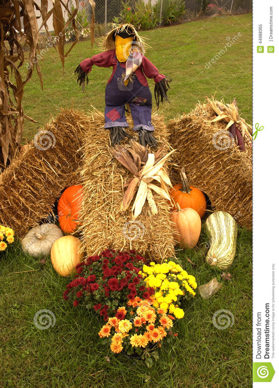 Fall Scenes Wallpaper With Pumpkins Fall Scene With Pumpkins Gourds Mums Hay And A