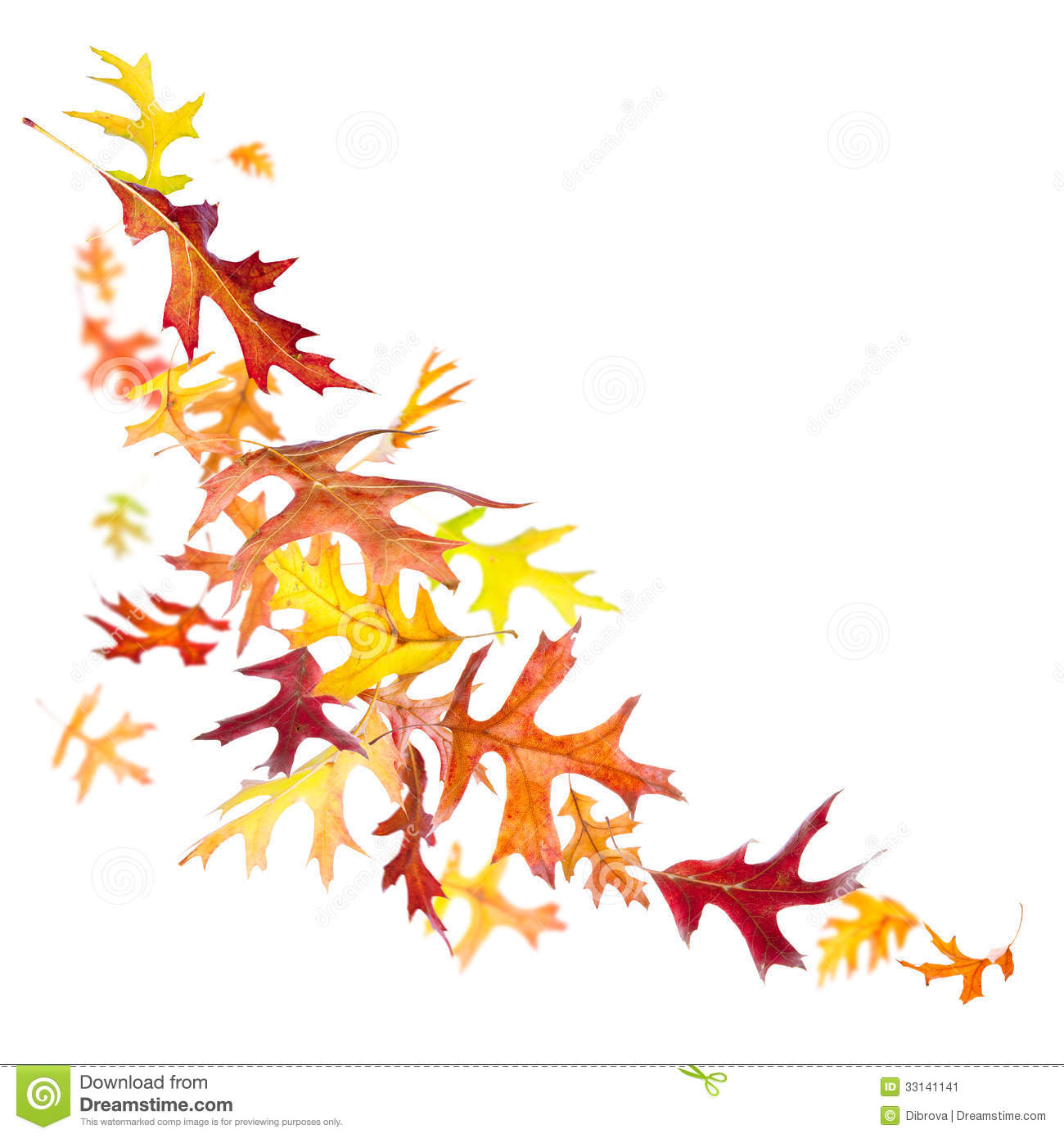 hight resolution of falling autumn leaves