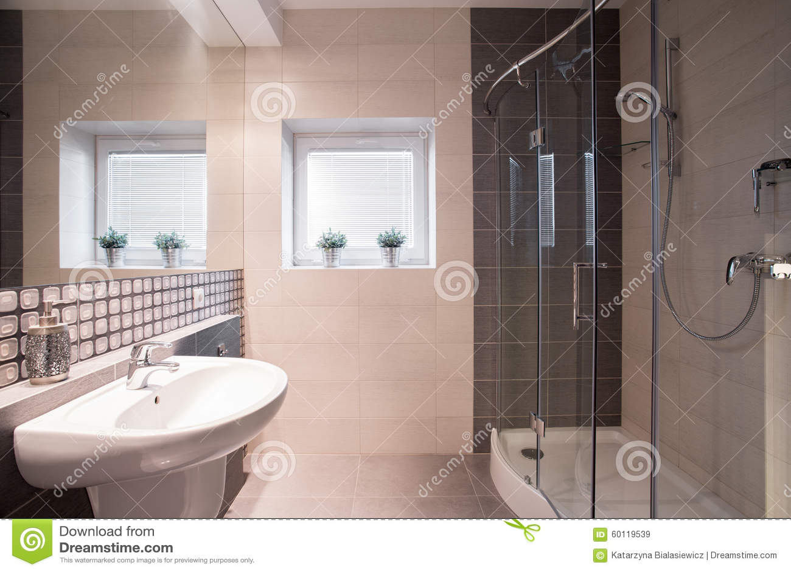 Fancy Bathroom With Big Shower Stock Image