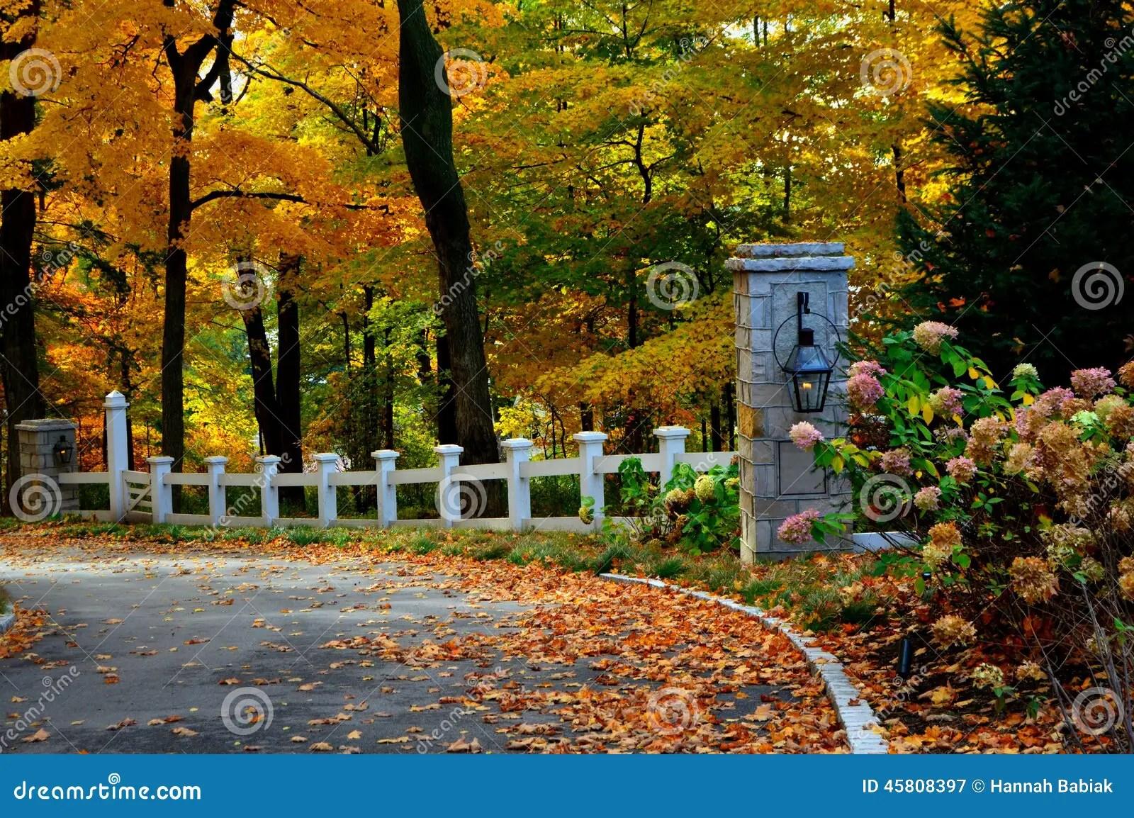 Fall Horse Wallpaper Fall Driveway Stock Image Image Of Colorful Lake Autumn