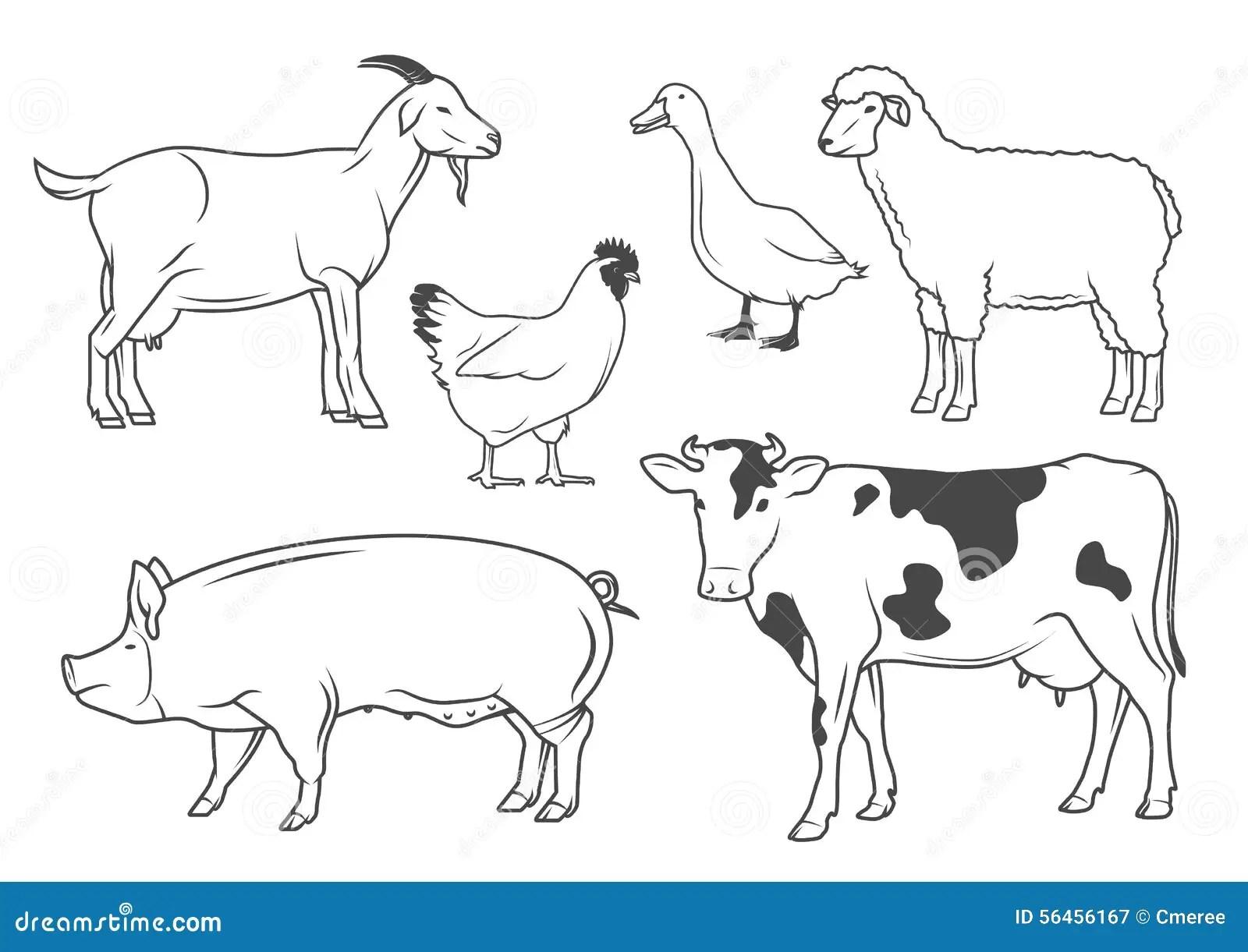 Farm Animals Stock Vector Illustration Of Nature