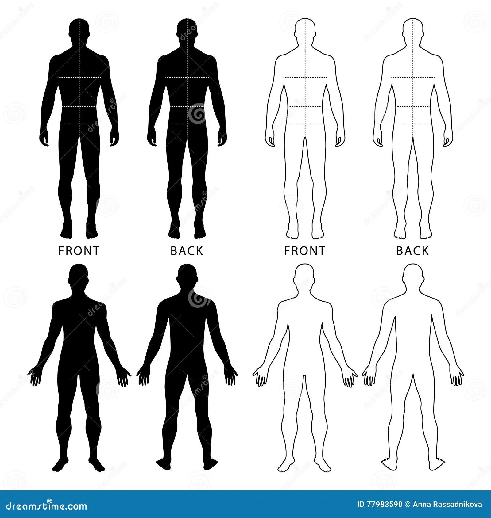 Fashion Man S Figure Stock Vector Illustration Of Bust
