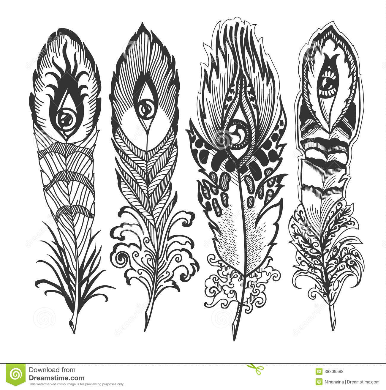 Feather With Eye Royalty Free Stock Photos Image 38309588