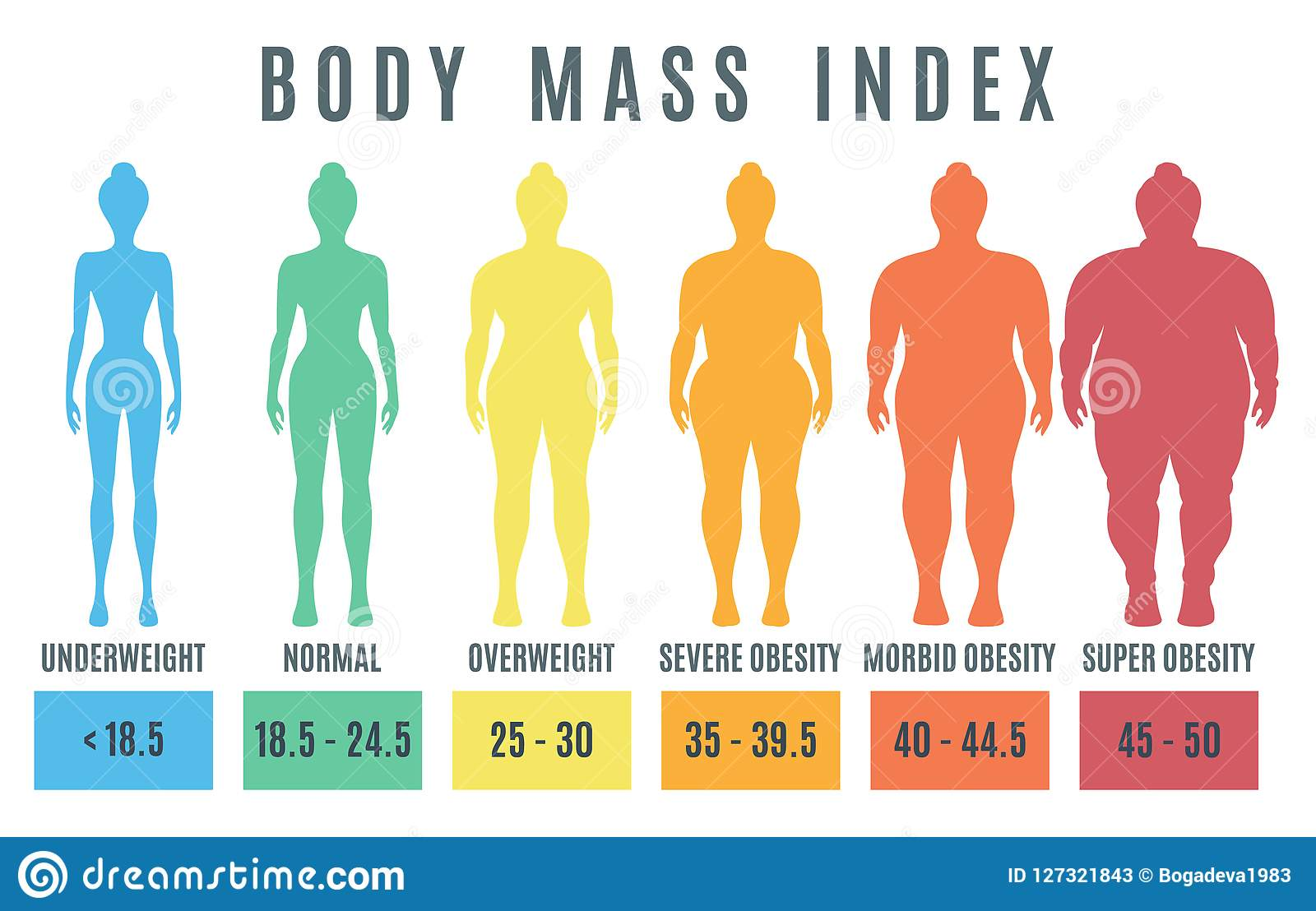 Index Body Mass Bmi Medical And Fitness Chart Vector