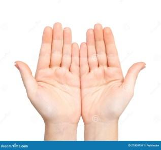 Resultado de imagen de hand palms