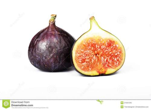 small resolution of fig fruit royalty free stock photo image 21591245 kiwi pictures clip art kiwi christmas clip art